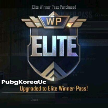 Pubg korea season 15 elite pass